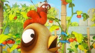 LARVA - WILD CHICKEN | Cartoon Movie | Cartoons For Children | Larva Cartoon | LARVA Official
