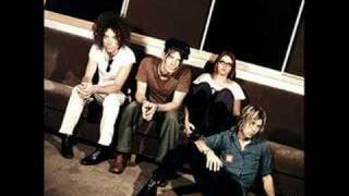 The Dandy Warhols - Wasp in the Lotus