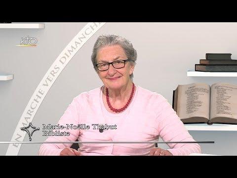 27e dimanche ordinaire A - Évangile