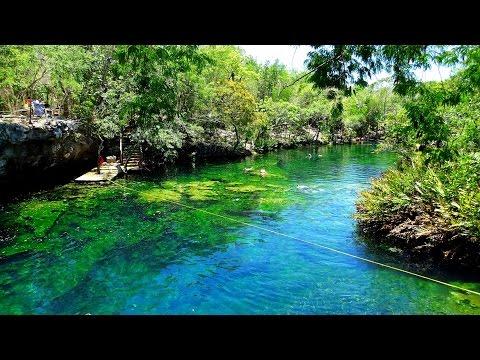 Cenote Jardin del Eden Cenotes Snorkeling Riviera Maya Quintana Roo Yucatan Mexico GoPro 4 UHD 4K