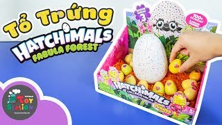 Ấp cả tổ trứng Hatchimals Season 3 và Fabula Forest ToyStation 280