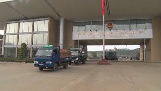 TP. Hồ Chí Minh: Cảng Cát Lái phát lệnh làm hàng đầu năm