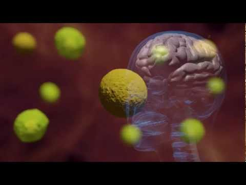 Bacterii esbl