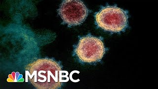 U.S. Coronavirus Death Toll Is Now Higher Than 9/11 Terror Attacks   The 11th Hour   MSNBC