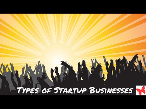 Wantrepreneur2Day #StartupSeries: Types Of Startups Businesses
