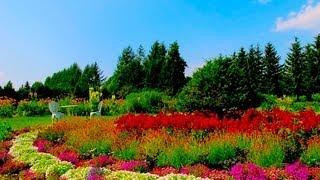 Flowers Garden 紫竹ガーデン 北海道ガーデン街道 Shichiku Garden 花の名所案内 Hokkaido Flower Garden