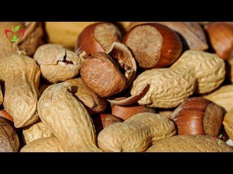 , title : 'Hazelnut || Hazelnuts Benefits || Health Benefits Of Hazelnuts