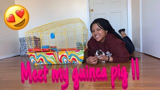 Cleaning My Guinea Pigs Cage || ThatGirlShadae