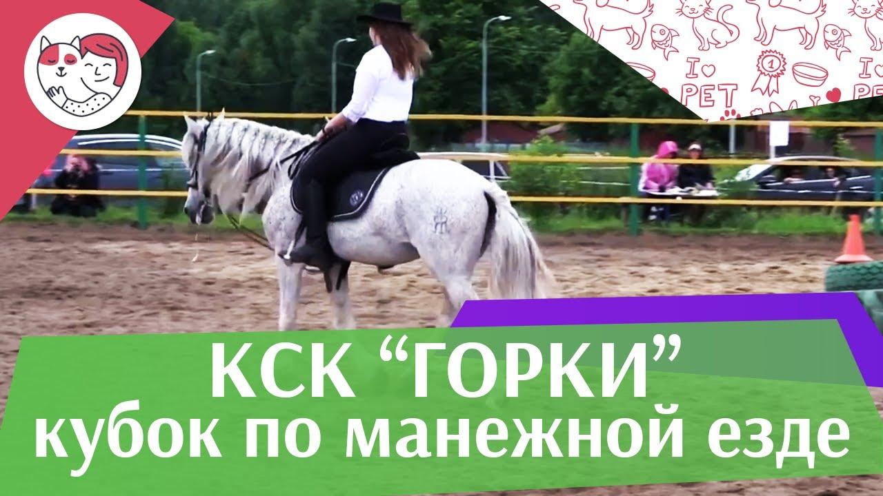 Летний кубок КСК Горки по манежной езде КЮР часть 30 на ilikepet