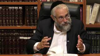 Rabbi Citrin on Ramchal's Derech Hashem #7