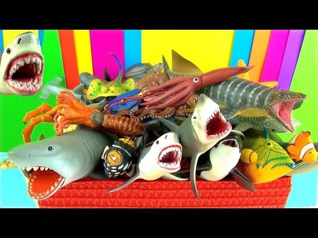Shark Toys Collection Whales Fish Turtles Toys for Kids Tiburón Tubarão Jaws