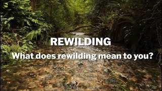Thumbnail for Rewilding -  What Does it Mean to You?