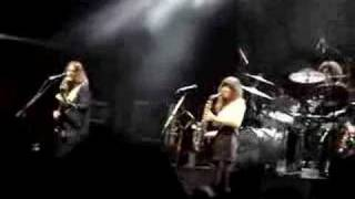 """""""PRESSURE POINT"""" -THE ZUTONS- *LIVE* THETFORD FOREST 5/6/08"""
