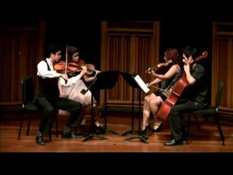 Playing string quartets is part of growing as a violinist.