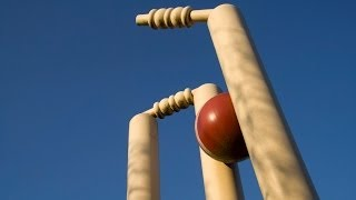 Cricket Stump: Hidden Fact About The Size Revealed