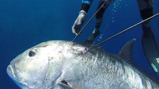 "Spearfishing Hawaii Maui ""Vengeance"""