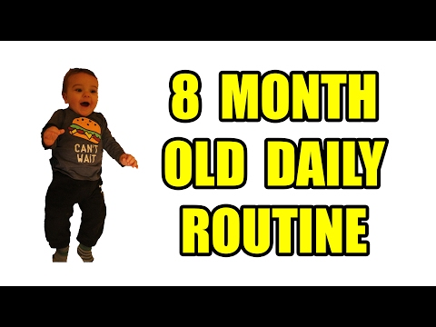 Video 8 Month Old Daily Routine