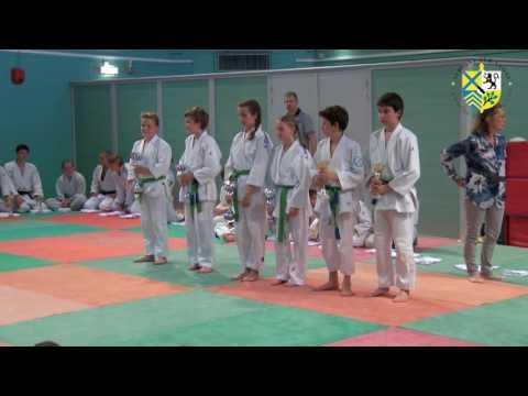 Gala du judo 2016 et récompenses aux sportifs