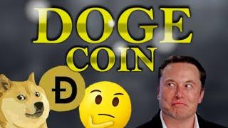 Wie hoch wird DoDecoin in die Zukunft gehen?