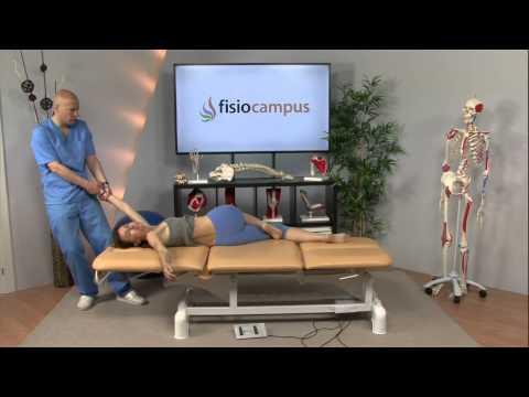 Superficie articolare laterale e mediale