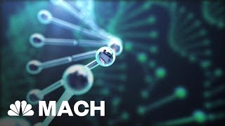 5 Groundbreaking Scientific Discoveries Of 2017 That Could Change Our Future | Mach | NBC News
