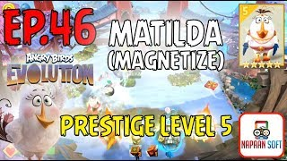ANGRY BIRDS EVOLUTION - MATILDA(MAGNETIZE) - PRESTIGE LEVEL 5 - and HATCHING EGGS - 5 STARS EGG