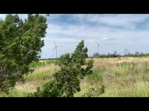 Windmills on the horizon near the park