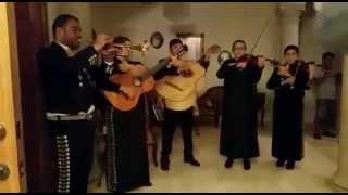 Las Mañanitas - Mariachi Sol Azteca de McAllen, TX