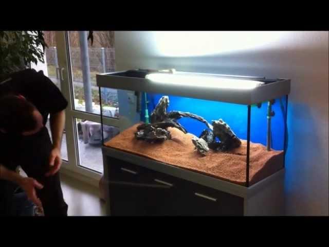 Aquarieneinrichtung mit Oliver Knott