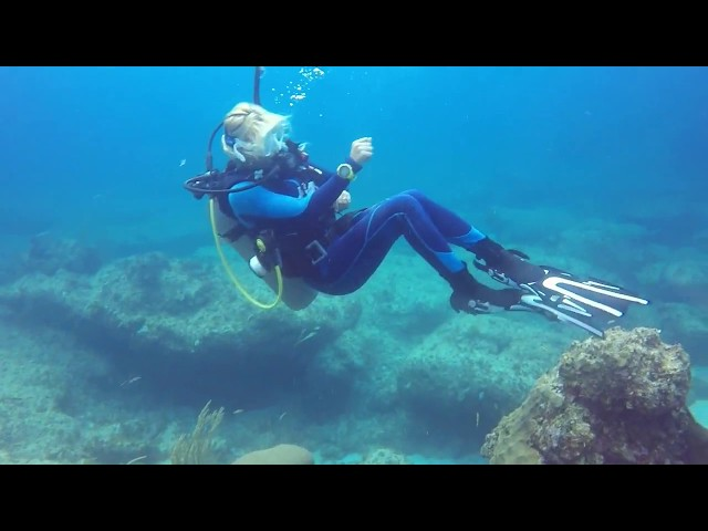 Dominican Republic Punta Cana Shipwreck and Coral Reef Diving May 2017