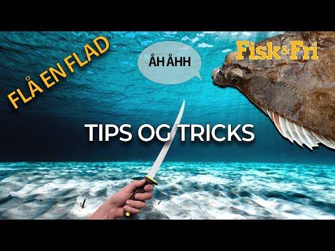 NY VIDEO: SÅDAN FLÅR DU EN FLADFISK