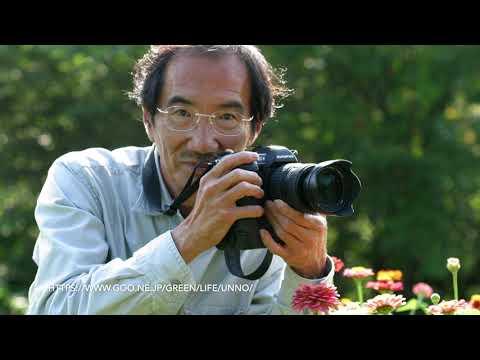 オリンパスデジタルカメラの歴史を語る