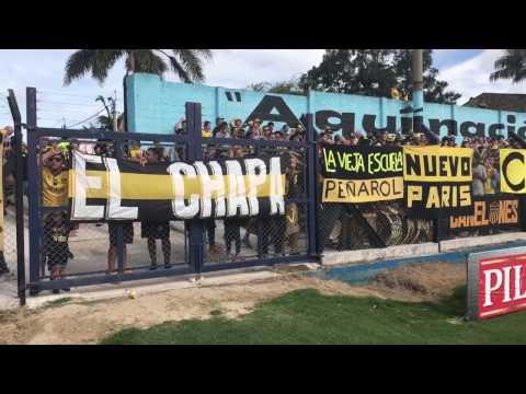 """""""""""Despacito'' - Nuevo tema original de la hinchada de Peñarol"""" Barra: Barra Amsterdam • Club: Peñarol"""