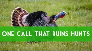 Turkey Calling: Greatest Mistake Of Calling Hens. How To Call Turkeys.
