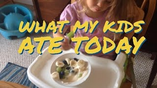 What My Kids Ate Today Vlog Clean Eating Real Food Family