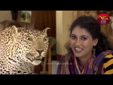 Adaraneeya Sri Lanka 2017-07-23 Episode 19 - Polonnaruwa| Sri Lanka Rupavahini Corporation | YouTube