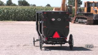 Solar-powered Amish buggy