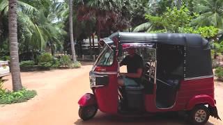 video: road trip through sri lanka