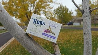 Tom's of Maine relaxing calming Lavender beauty bar review