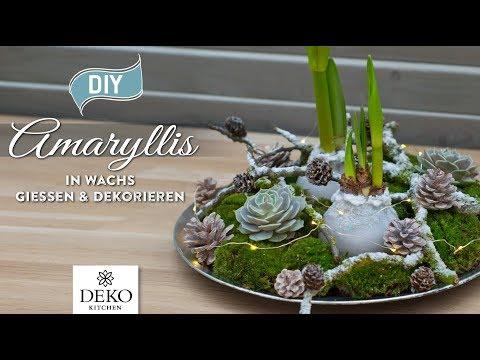 DIY-Weihnachtsdeko: Amaryllis in Wachs gießen und dekorieren [How to] Deko Kitchen (P)