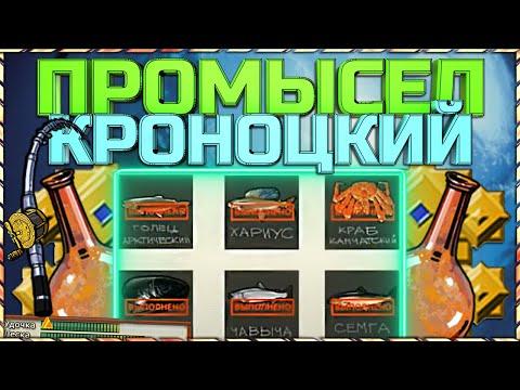 РР3 Кроноцкий промысел   Полное прохождение и призы за квест