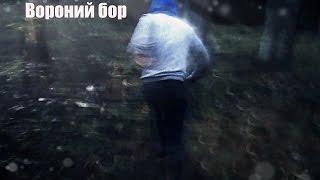 Вороний бор ( BackWard)