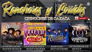 descargar musica mexicana rancheras gratis