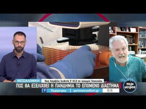 Ν. Καπραβέλος: Εκρηκτικό το μίγμα μετάλλαξης και ανεμβολίαστων   14/07/2021   ΕΡΤ