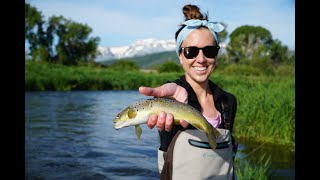 World Class Fly Fishing in Park City, UT with Park City Fly Fishing Company