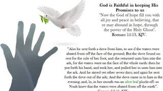 Dove With The Olive Branch- A Reminder Of God's Faithfulness