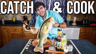 HUGE BASS BACK TO BACK! (Catch & Cook)