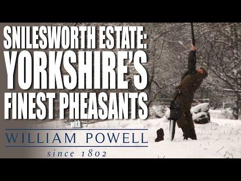 Snilesworth Estate – Pheasants on a Grouse moor