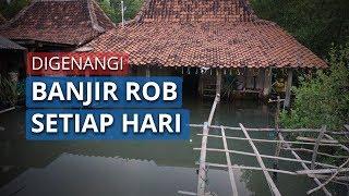 Tiap Hari Tergenang Banjir Rob, Warga Desa Timbusloko Demak Pertanyakan Komitmen Bupati