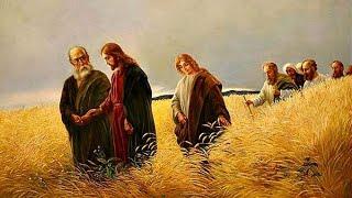 'diretta Santa Messa V domenica di Quaresima' episoode image